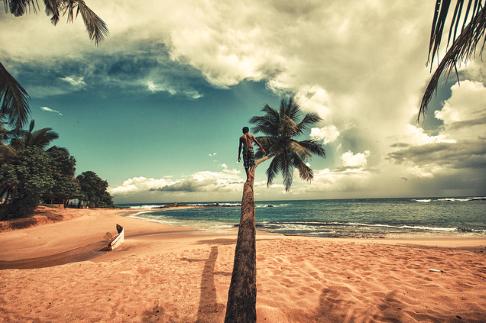 Σρι Λανκα Παραλια 2